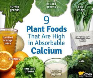 calcio vegetale