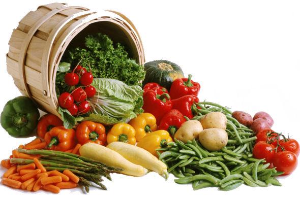 verdure-suggerimenti.jpg