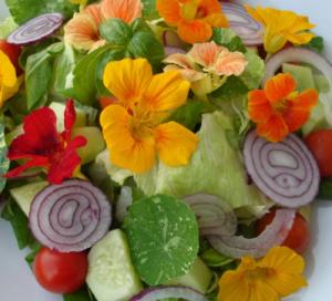 insalata fiori